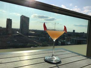 Tessmanian Devil Cocktail Vane Skybar