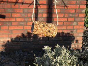 Vogels voeren: wc-rol pindakaas