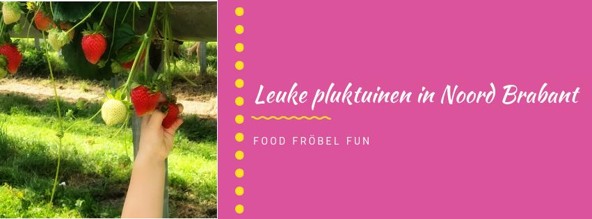 8 tips voor leuke pluktuinen in Noord Brabant