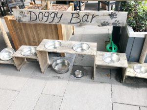 honden boshuys best - uitje kinderen